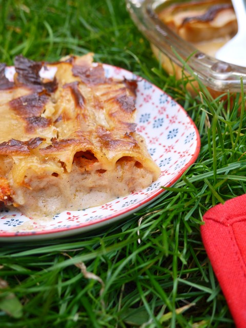 canneloni-tofu-betty-vegetarien