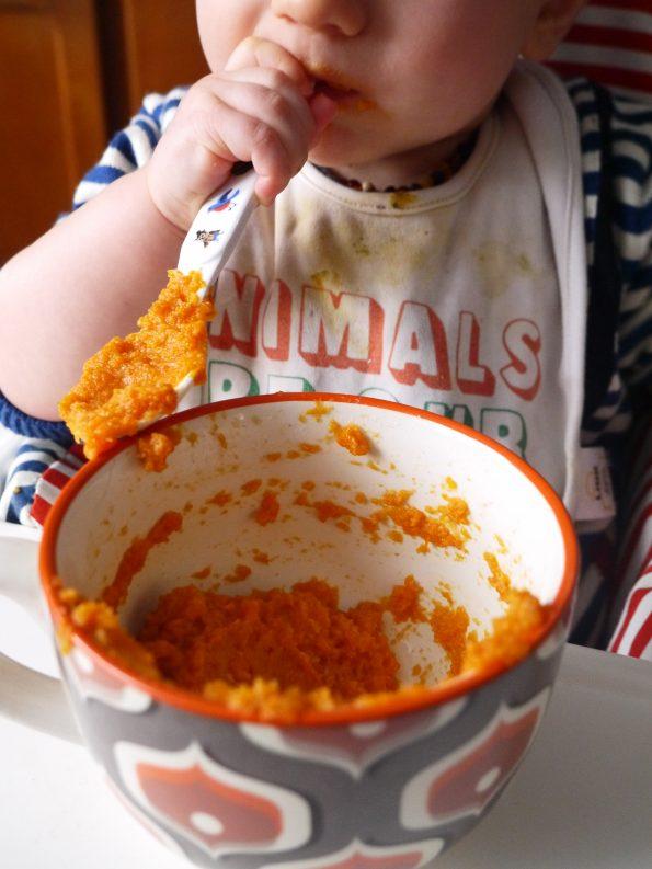 puree-carotte-epeautre-betty