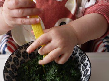 puree-epinard-vegetalien-betty