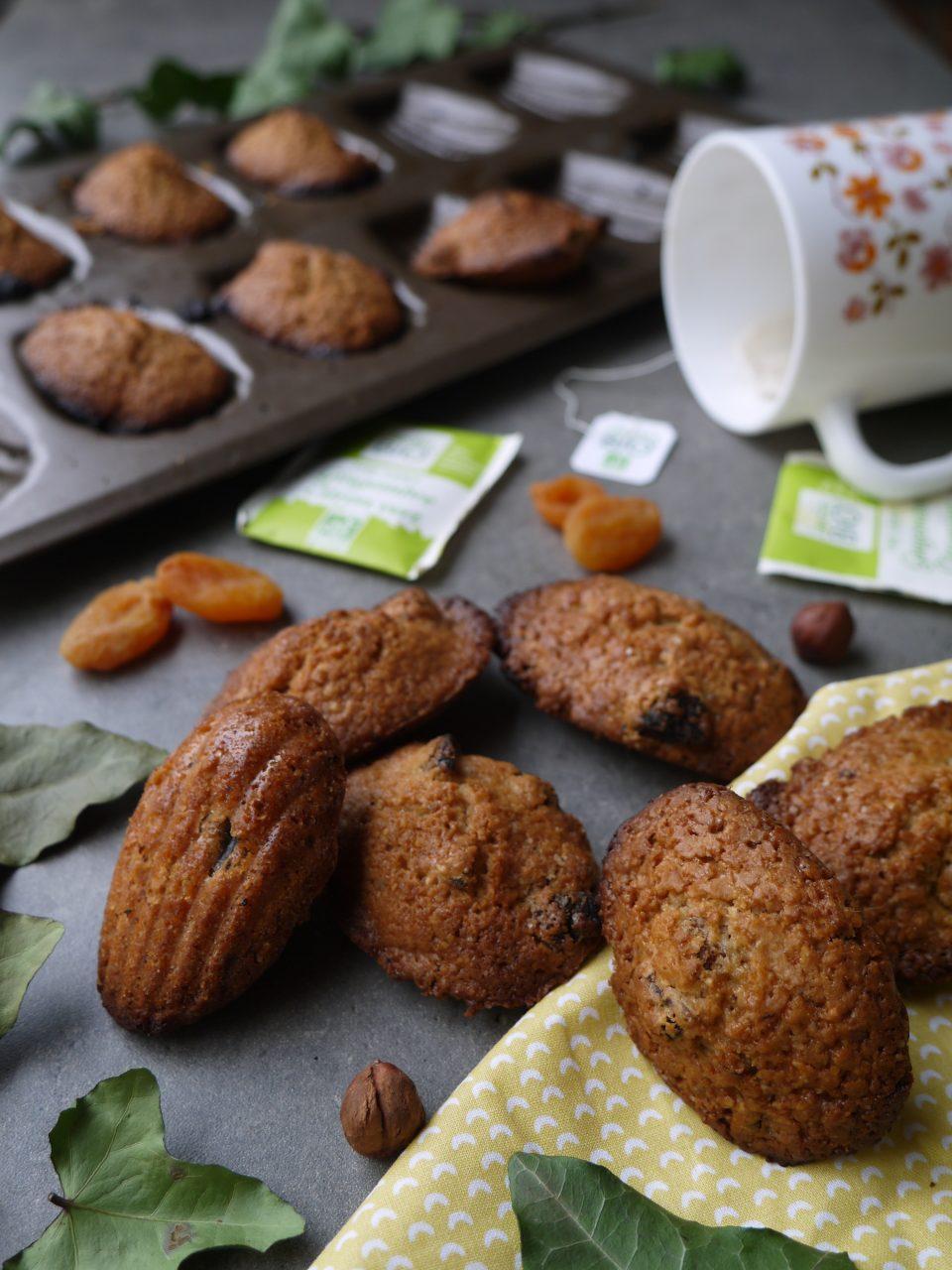 madeleine-noisette-abricot-betty
