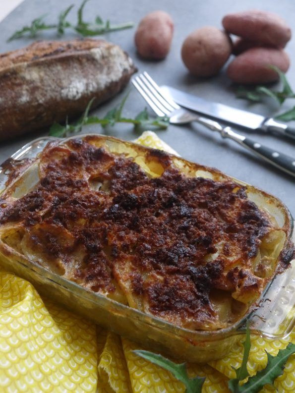 gratin-fenouil-tofu-betty