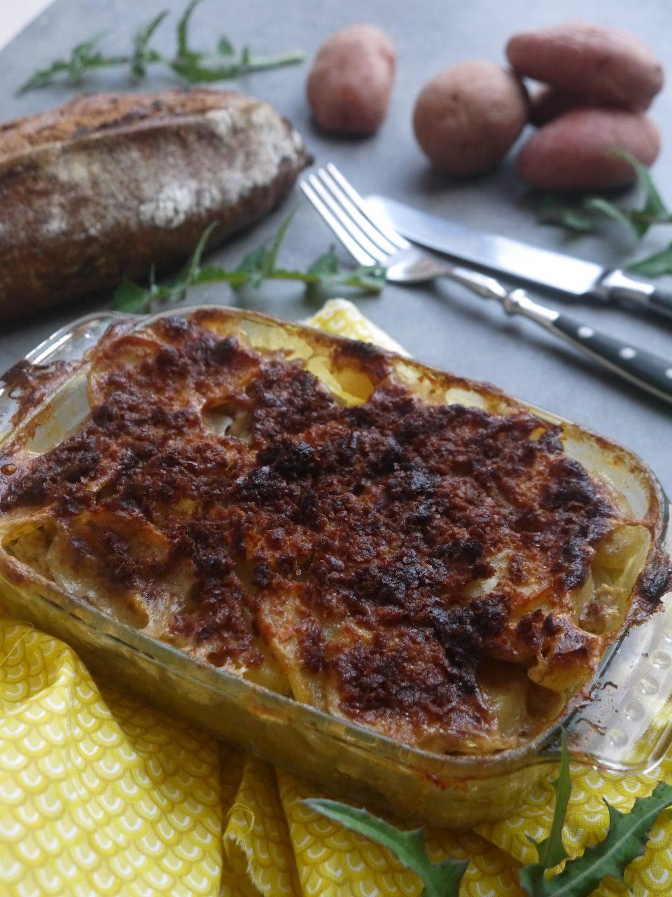 gratin-fenouil-tofu-betty